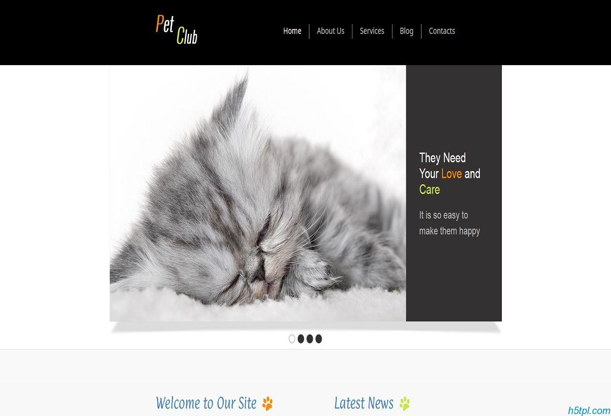 黑色宽屏大图宠物狗狗俱乐部网站模板