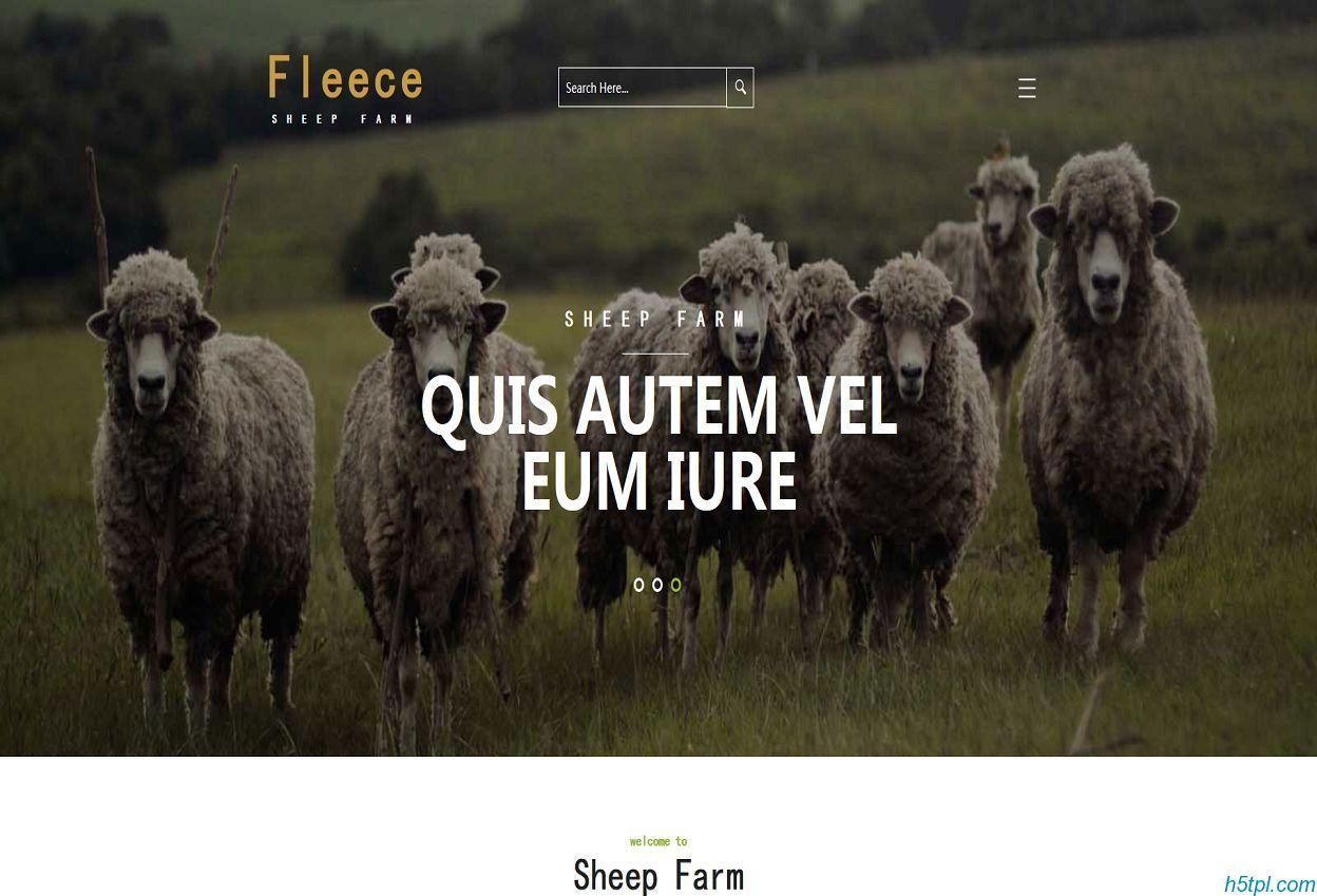 绵羊动物养殖企业网站模板是一款牛羊畜牧业养殖HTML5模板下载