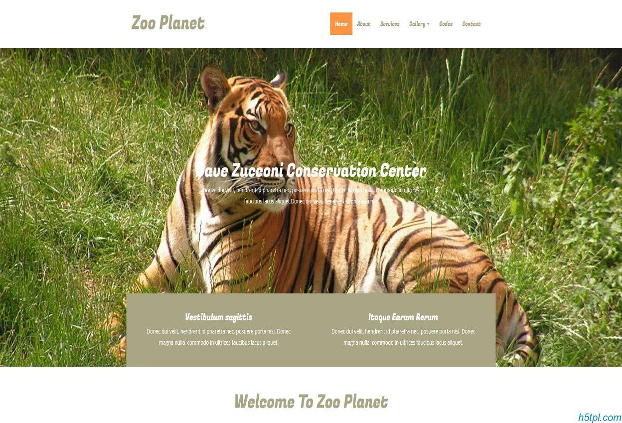 老虎动物园网站模板是一款html5模板,适合各种动物养殖场网站模板下载