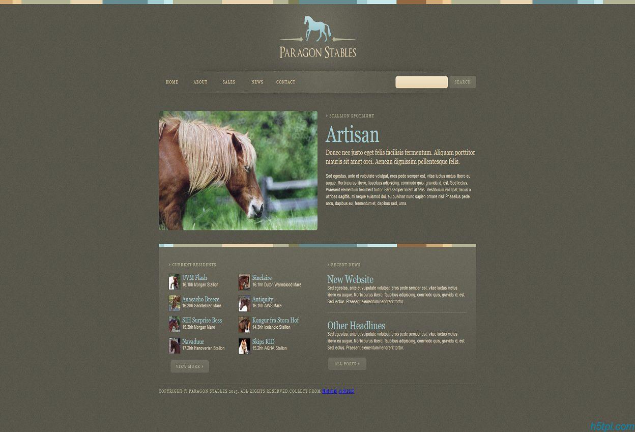 棕色简单马匹动物行业html模板