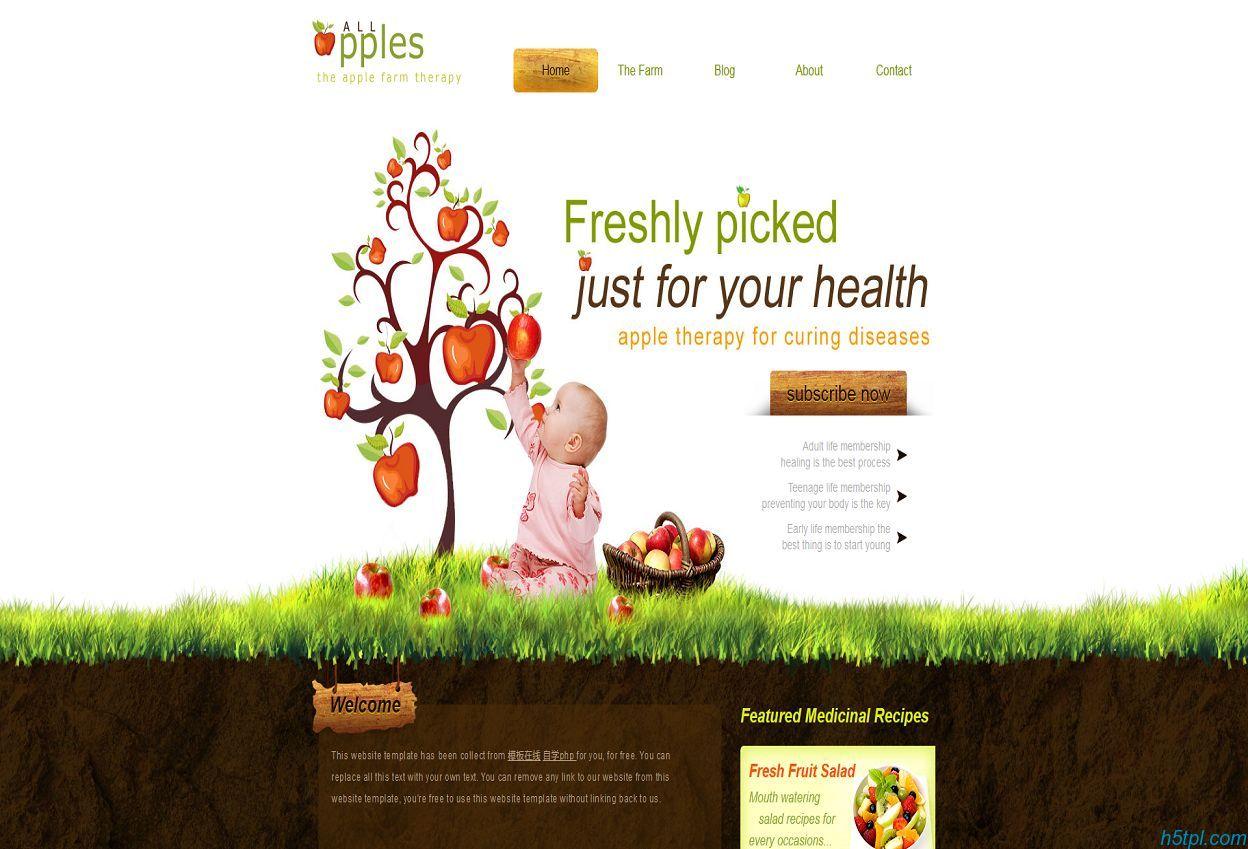婴儿树儿童健康食品整站模板