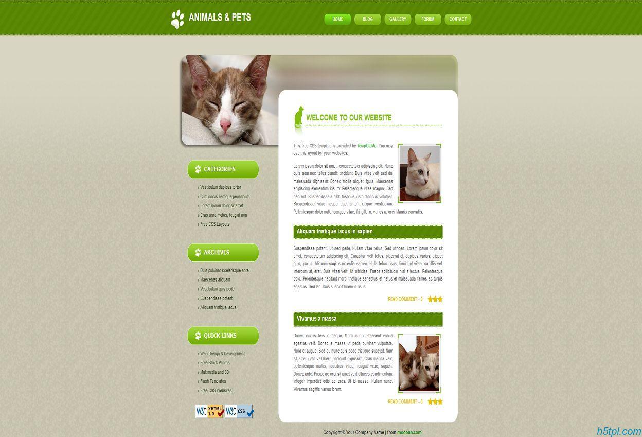可爱猫咪绿色博客模板
