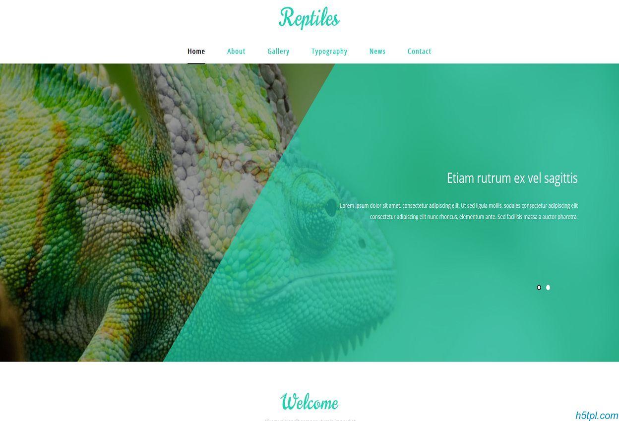 两栖动物展示网页模板是一款HTML模板,适合户外野生动物展示网站模板