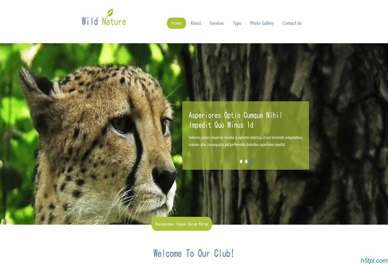 老虎养殖基地HTML5模板是一款适合动物园养殖类HTML5网站模板下载