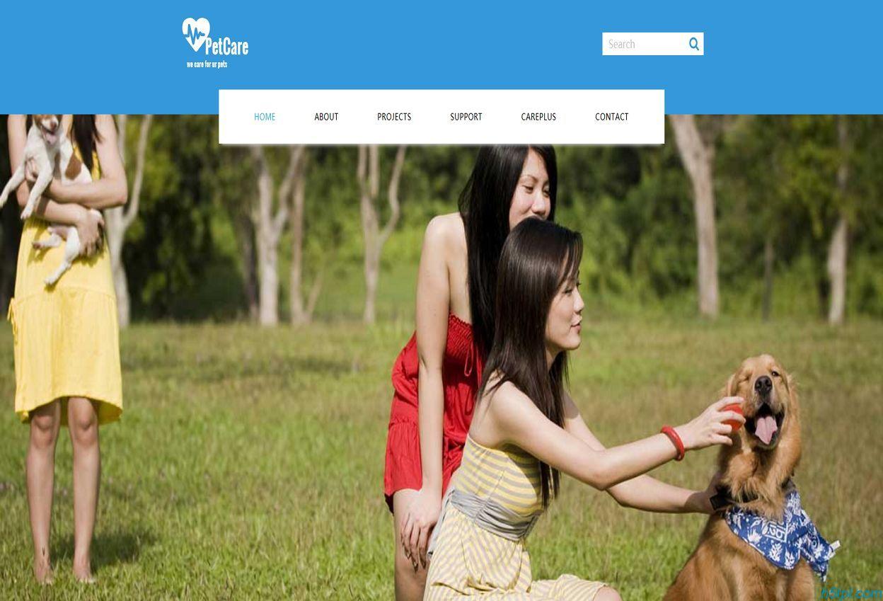 宠物之家美容店企业网站模板