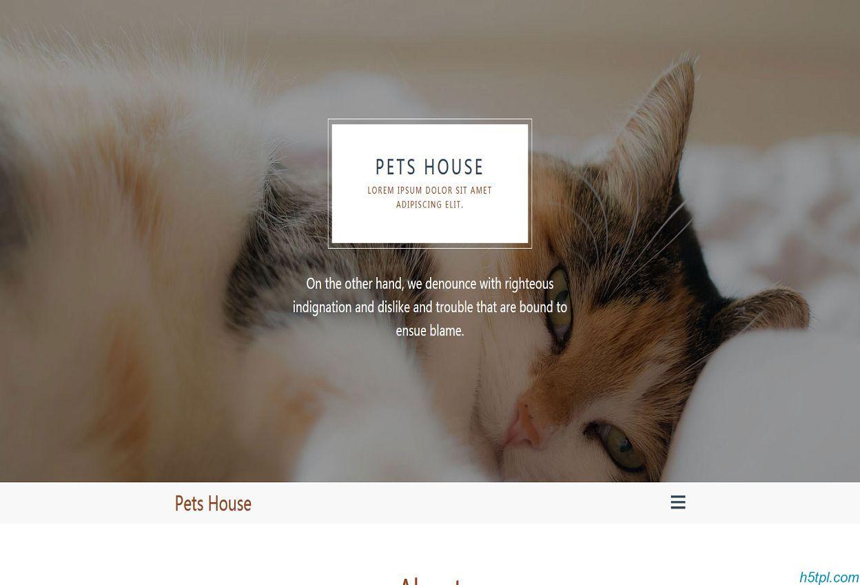 HTML5大气简洁宠物网站模板是一款绿色大气风格的HTML5宠物网站模板