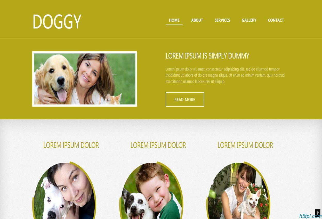 橙色宽屏CSS3网页模板是一款适合宠物狗展示的CSS3网页模板