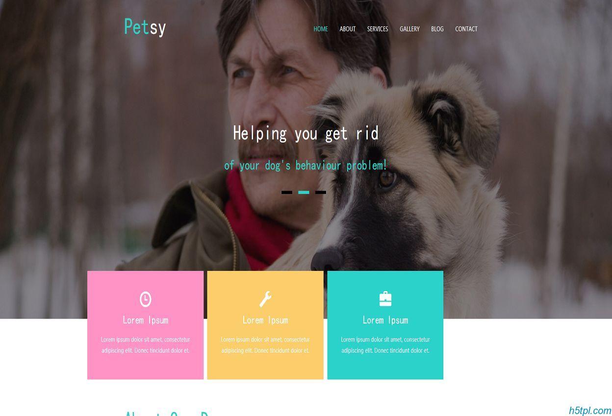 宠物美容企业网站整站模板_猫_狗_整站_bootstrap_手机_响应式_个性_多彩