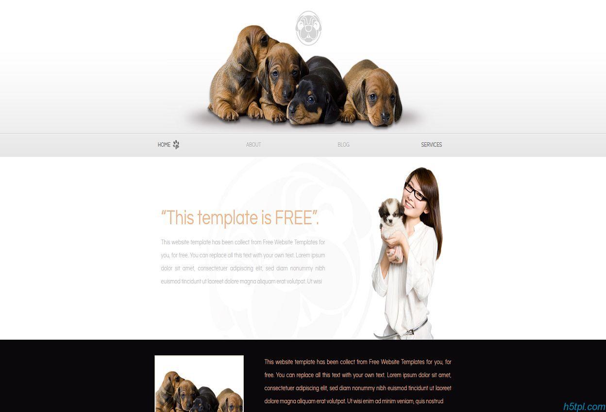 漂亮精致的宠物狗网页模板下载
