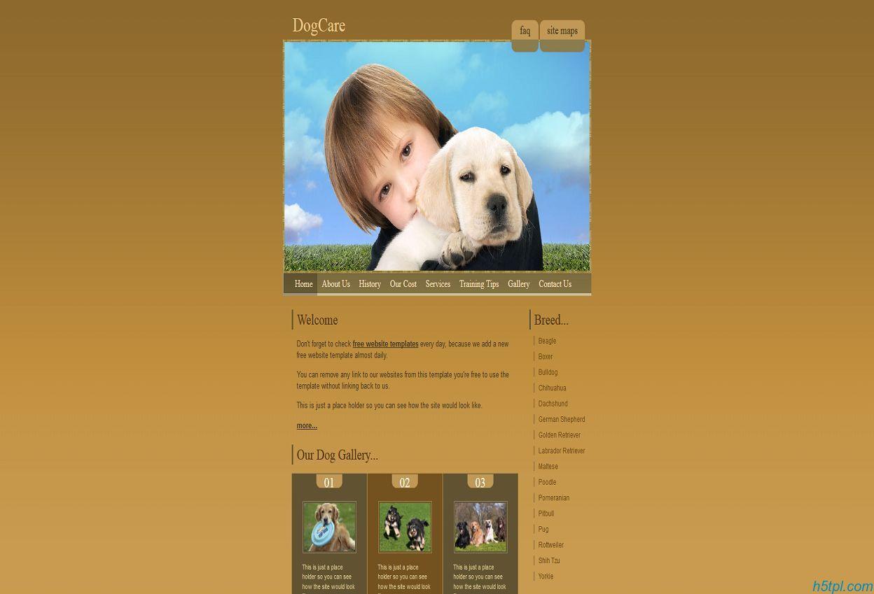 棕色宠物狗网站模板下载