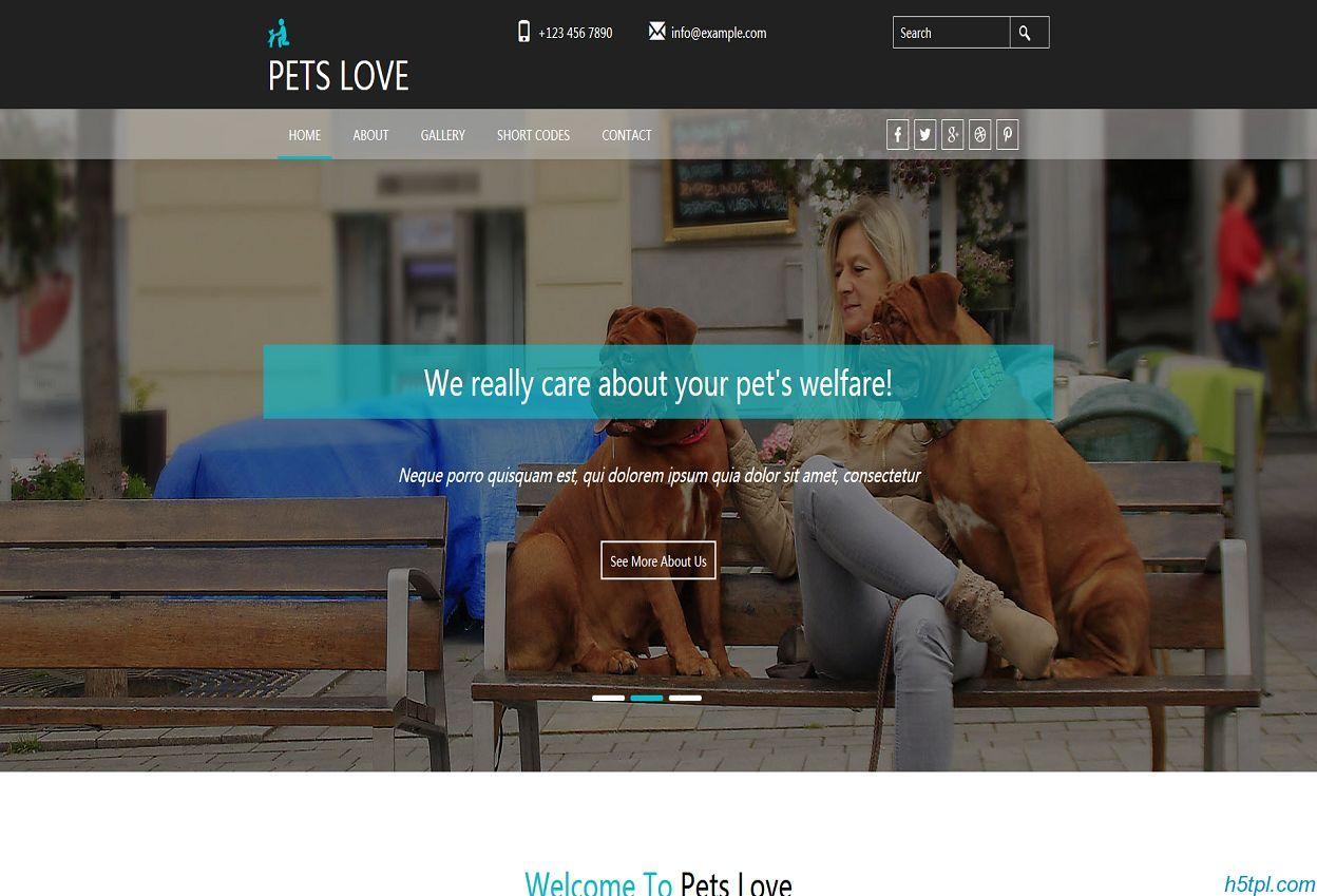 爱狗爱猫人士网站模板里面包含5个子页面,适合宠物爱好者网站模板下载