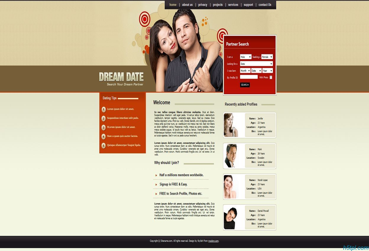 漂亮的婚恋交友类型网页CSS模板