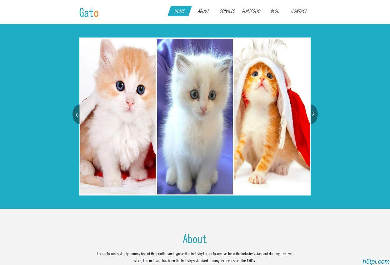 宠物猫买卖交易网站模板是一款清爽好看风格HTML宠物类网站模板