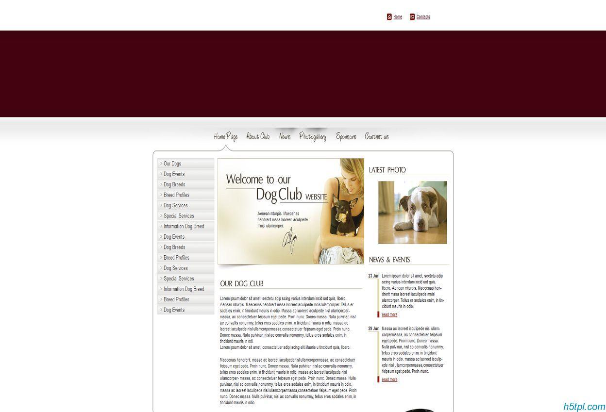宠物狗类暗红色网站模板_宠物_暗红色_红色_狗