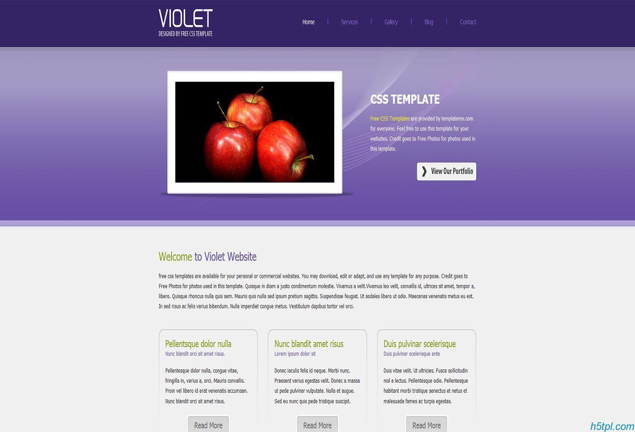 漂亮的紫色服务系企业模板