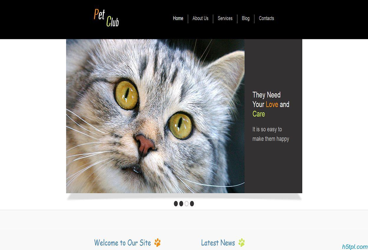 宠物饲养Html5网站模板是一款超大幻灯片的爱心宠物领养网站模板