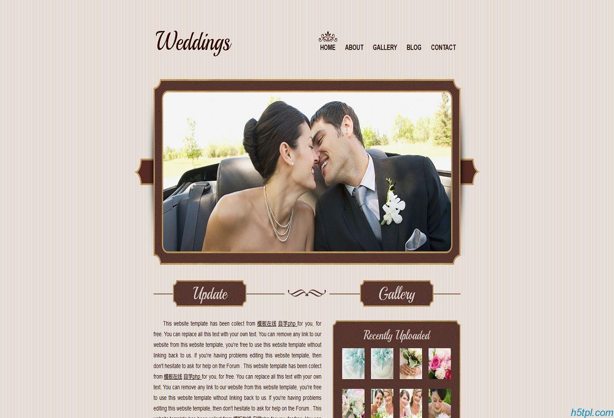 棕色栅格漂亮的恋爱结婚css模板