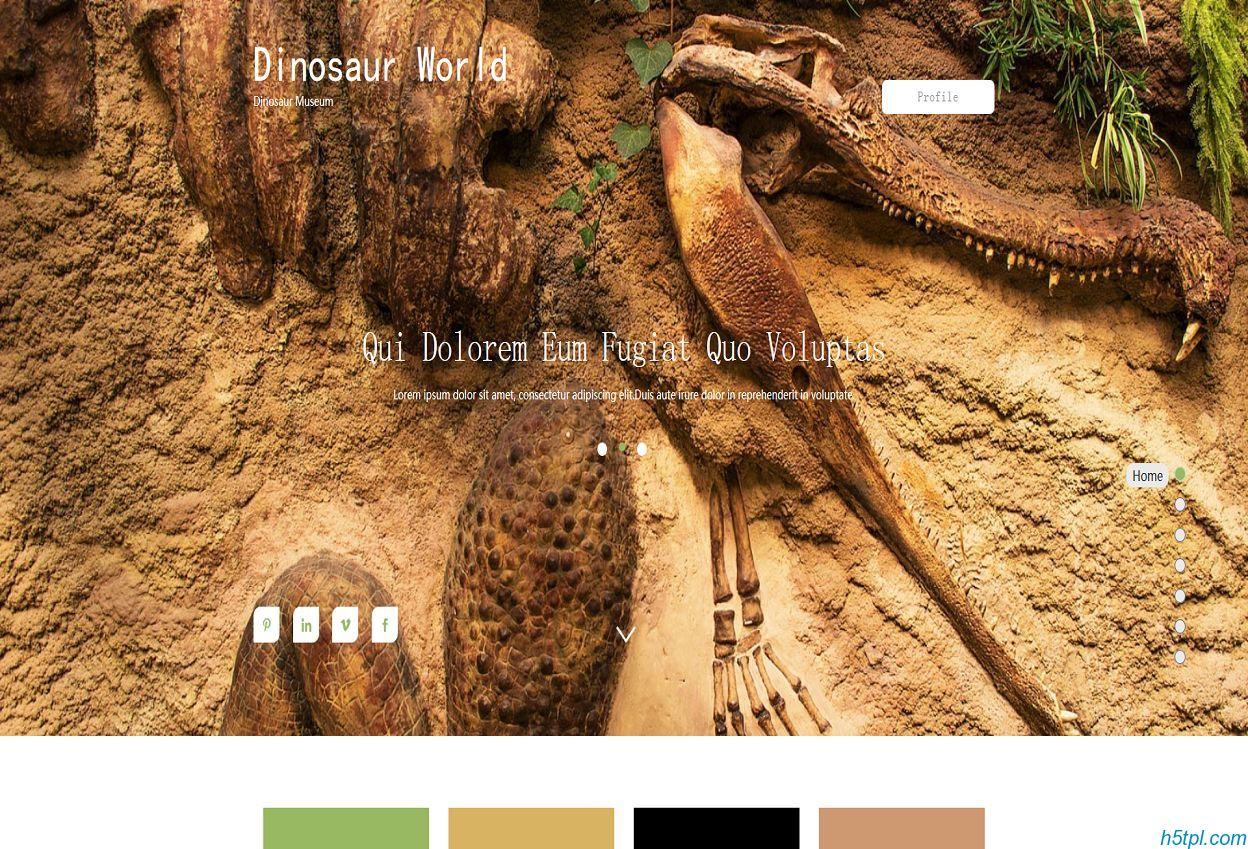 动物标本馆官方网站模板是一款适合野生动物标本研究所HTML5网站模板