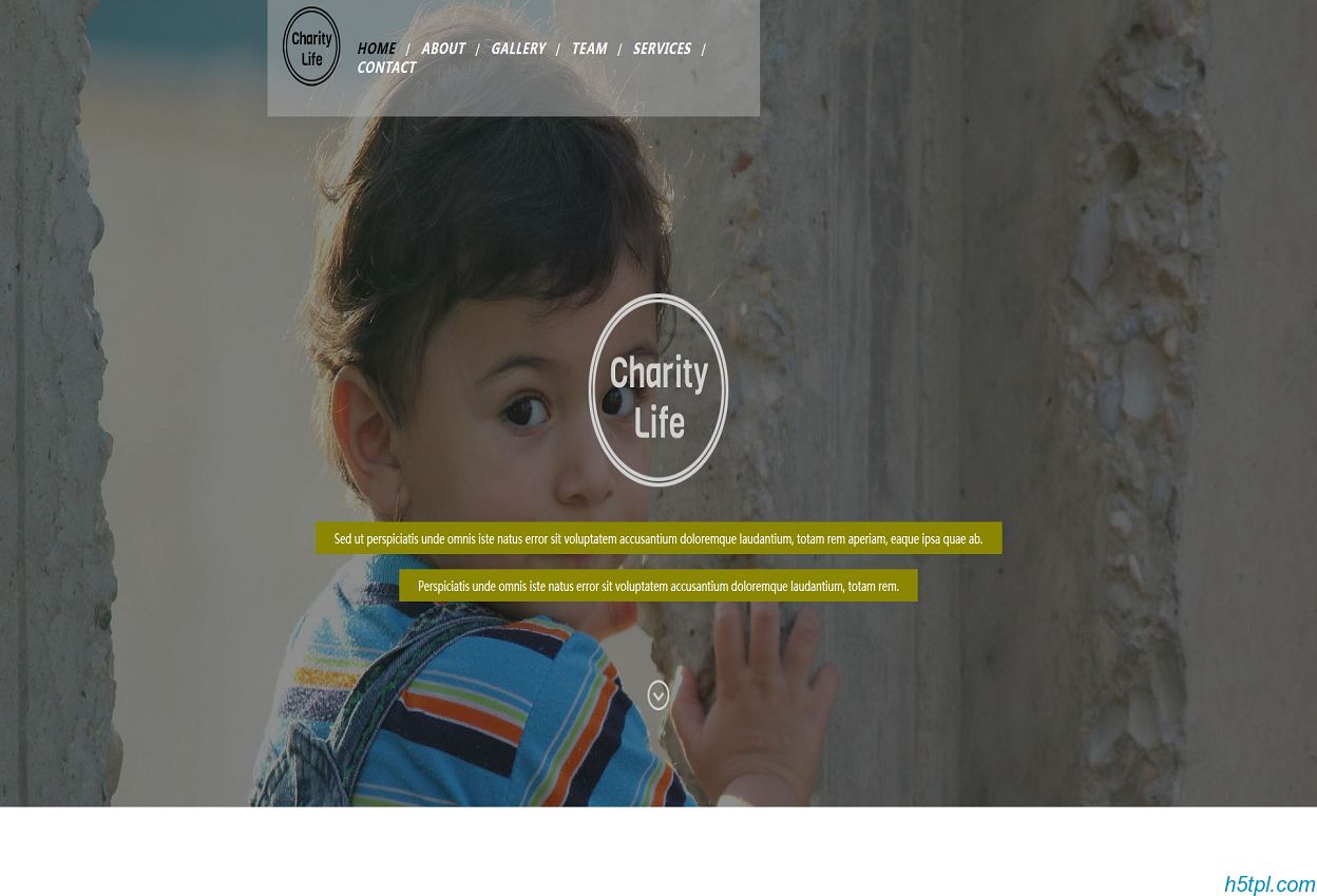 残障儿童公益项目网站模板是一款国外儿童公益相关网站模板