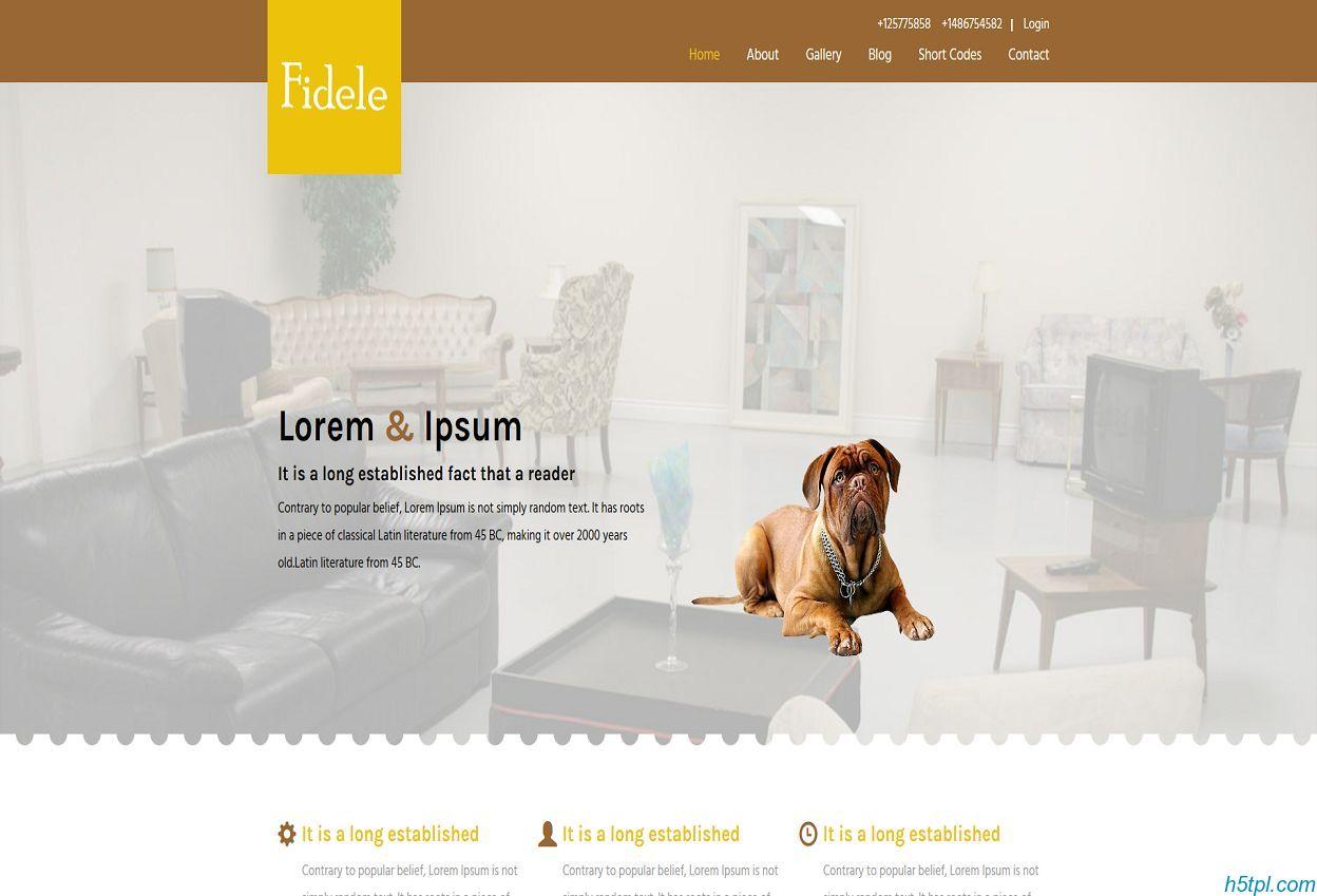 宠物医院企业网站模板