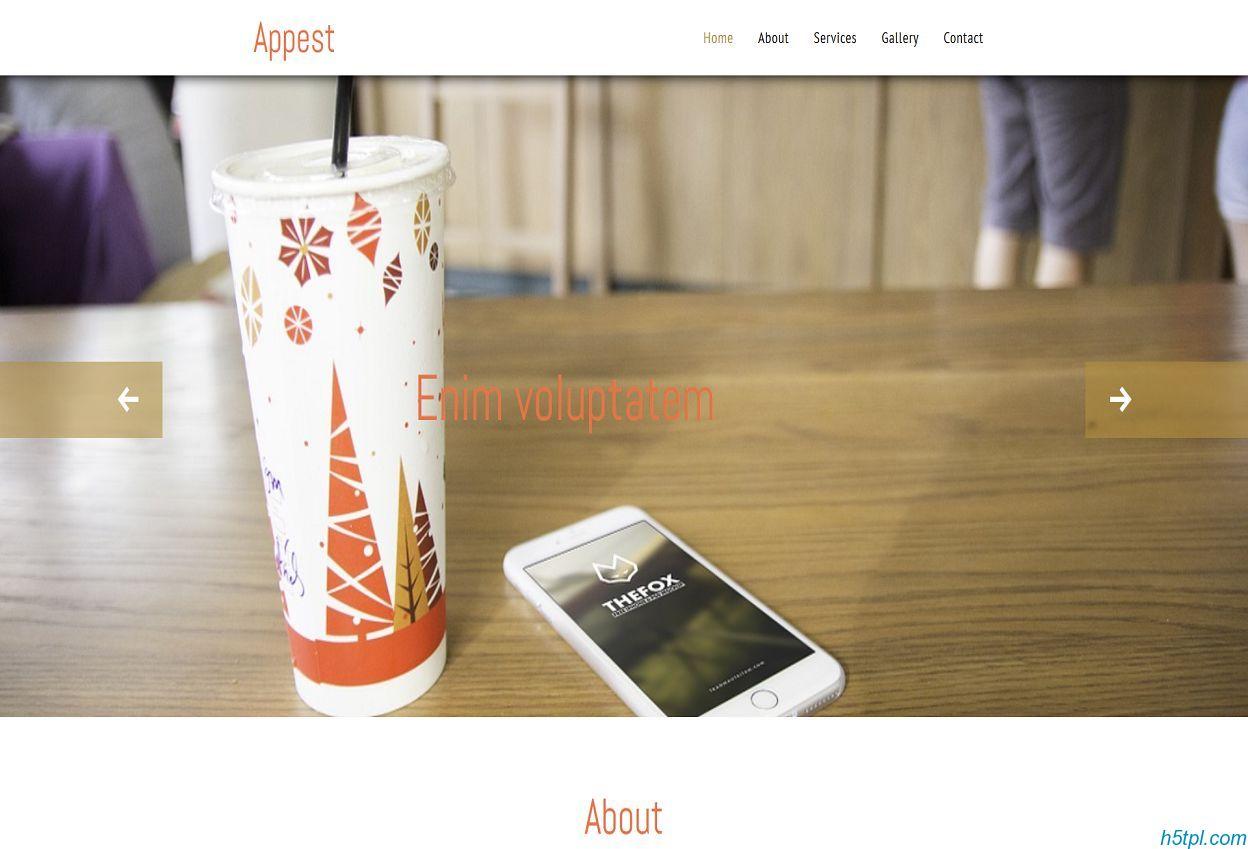 app开发者企业官网响应式模板