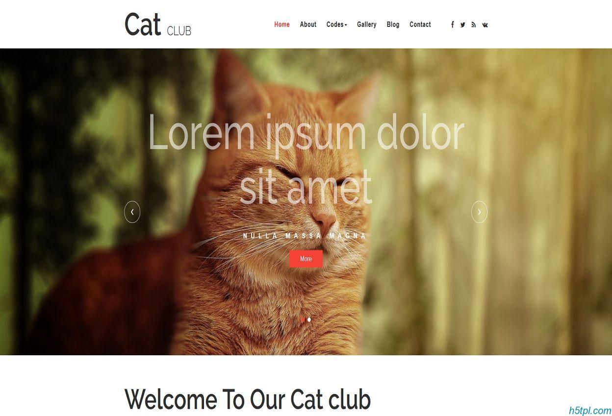 宠物猫俱乐部网站模板里面包含8个子页面,适合宠物爱好者网站模板